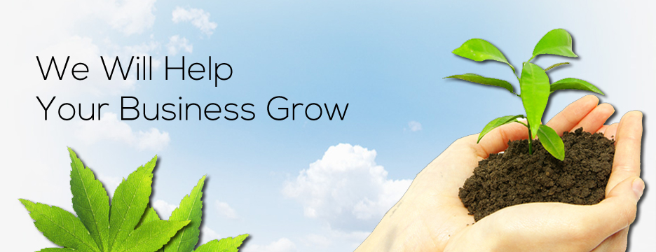We Will Help Your Business Grow